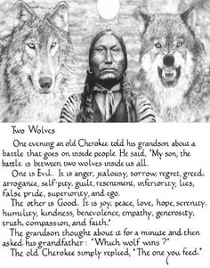 Two Wolves - which one do you feed? Two Wolves Story, Great Quotes, Inspirational Quotes, The One You Feed, Native American Wisdom, Wolf Quotes, Jealousy, Proverbs, Positive Affirmations