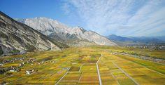 Venez découvrir le paysage du Domaine Rouvinez en réservant votre visite sur Wine Tour Booking
