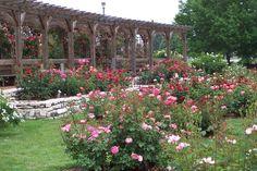 The perfect setting... Nan Elliott Memorial Rose Garden at Gordon Moore Park on Rt 140.