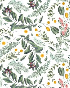 lt_May 18 2017 at Illustration Art Nouveau, Pattern Illustration, Botanical Illustration, Watercolor Illustration, Design Textile, Design Floral, Graphic Patterns, Print Patterns, Boho Pattern