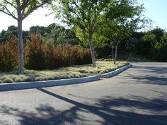 SQLA Inc. // West Hills Planting Commercial Landscape Design, West Hills, Planting, Sidewalk, Garden, Plants, Garten, Side Walkway, Lawn And Garden