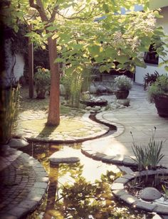 Patio with water wending through it
