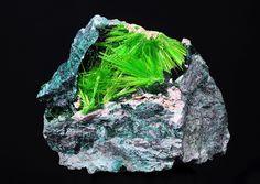 Cuprosklodowskite ..Uranium - containing mineral, cuprosklodowskite (copper uranyl silicate hydrate) from Congo.