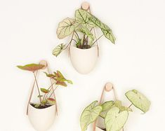 Add some vertical greenery to any wall in your home. The hanging ceramic planter hangs from vegetable-tanned leather fastened with a brass screw. High fired porcelain creates a white smooth matte look. Curate your own organic installation, grow an herb garden on your kitchen wall or use to store small notions above your desk. Each porcelain piece is made by hand. Group them together to add a little greenery to any room in your home. Planter measures 4.25 high x 4 wide. Total height with…