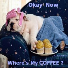 """Where's my coffee....... ohGawd, this pinner knows ME!  down to the """"pink spongies"""" I thought was MY secret.  too cute. silktraveler.com."""