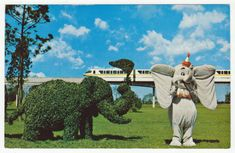 Postcards - United States # 91 - Walt Disney World, Florida