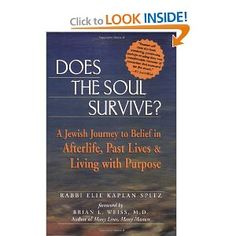 Does the Soul Survive?: A Jewish Journey to Belief in Afterlife, Past Lives & Living with Purpose -  IT was interesting to see Jewish Beliefs.