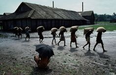 Work | Steve McCurry