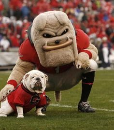 Uga VII poses for a photo with fellow mascot Hairy Dawg.
