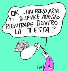 cervello.................................