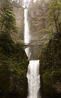 Multnomah Falls is a waterfall on the Oregon side of the Columbia River Gorge, located east of Troutdale, between Corbett and Dodson, along the Historic Columbia River Highway. Oh The Places You'll Go, Places To Travel, Places To Visit, Beautiful World, Beautiful Places, Amazing Places, Beautiful Sites, Multnomah Falls Oregon, Oregon Waterfalls