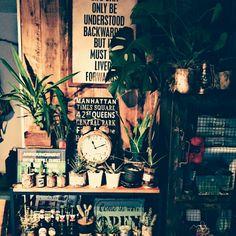 mayaさんの、サボテン,チョベリバー,飲兵衛部自主練,ienowa,ゆぴのこさん❤,手作り,塗料缶,賃貸,ブログ更新しました(゜m゜