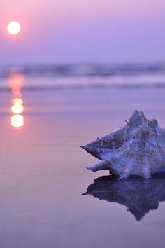 #seaside                                                                                                                                                                                 More