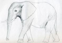 Die Elefanten sind sehr groß, aber trotzdem sehr niedlich. Hier finden Sie eine Idee, wie man einen Elefant einfach zeichnen kann.