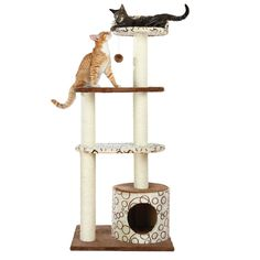 Trixie Pet Products Gaspard Cat Tree -- To view further for this item, visit the image link. (This is an affiliate link and I receive a commission for the sales)