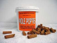 Mole Popr's: Repels burrowing rodents in an environmentally-safe and non-toxic way