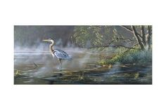 Quiet Cove - Great Blue Heron Giclee Print by Wilhelm Goebel at Art.com