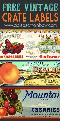 FREE vintage orchard fruit crate labels from early 1900! Plus fun project ideas! - A Piece Of Rainbow