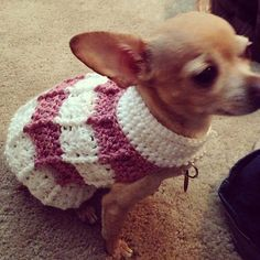 Simple Cables Dog Sweater pattern by Cobos Closet