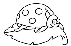 Ladybirds - 999 Coloring Pages