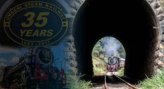 Umgeni Steam Railway Steam Train Rides, Steam Railway, Steam Locomotive, Africa, Website, Afro
