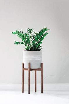 ** Our current lead time is 3-4 weeks. We apologize for the delay and invite you to use coupon code Green10 for an additional 10% off your order. Mid century modern plant stand, Inspired by the 1950s... this beautiful mid century style plant stand is the perfect decor piece for any room. Made from locally sourced wood. The stands have been stress-tested at over 100LBS to ensure it can withstand the weight of even your heaviest plant friend. ****Ceramic pot not included**** Dimensions: Leg...