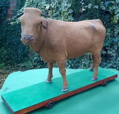 VIDEO Mooing cow automaton  24 inch Roullet Decamps 1900 loud bing glass eyes Cow, Antiques, Glass, Ebay, Antiquities, Antique, Drinkware, Corning Glass, Cattle