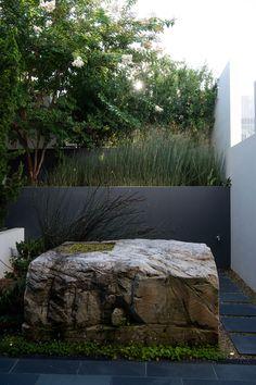 Downsizing a Mosman Urban Garden - Michael Cooke Garden Design Sydney Gardens, Internal Courtyard, Habitats, Garden Design, Wildlife, Home And Garden, Urban, Landscape, Nature