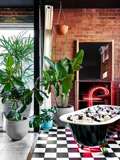 Neon signs, indoor plants, and bathtubs in an office space? So cool
