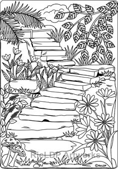 20 coloring pages #nature #coloring #pdfprintable