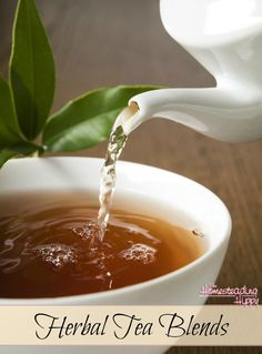 Drinking herbal teas are a great way to get some of the benefits of the herbs in a soothing drink. Pick a favorite and start enjoying today! The HomesteadingHippy #homesteadhippy #fromthefarm #herbal