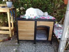 WERBUNG Eine Hundehütte für meine Sheila Der Aufbau der Hundehütte gestaltet sich recht einfach. Ein Billy ist schwieriger aufzubauen. Die verschiedenen Teile… 🤔 Lest meine Meinung dazu in meinem Blog.  #basteln #Hobby #Hund #hundehütte #Husky #Martin_testet #produkttest #werbung Outdoor Furniture, Outdoor Decor, Husky, Blog, Home Decor, Indoor, Simple, Decoration Home, Room Decor