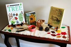 Fall Nature Table, verymama... I like this idea, you could even incorporate handicraft work in the making of each table runner, and sensory play in a bin on one end... kids can use this table for things they find... books are out and available. I like it.