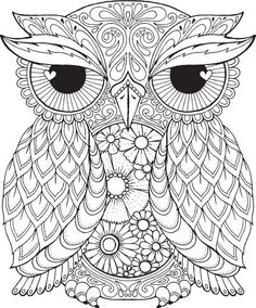 Seth Owl - Colour with Me HELLO ANGEL - coloring, design, detailed, meditation, coloring for grown ups, owl, cute colouring for kids: