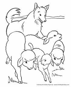 farm animal coloring page free printable sheep coloring pages featuring flock of sheep of farm animals coloring page sheets - Farm Animal Coloring Pages Sheets