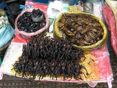 Cambodian Street #food  http://cambodia.threeland.com  Their spiders are no joke. I ate a leg once... I will try again next time lol