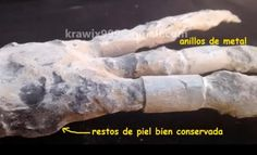 Artifact from cache of possible alien remains found in Peru 2016. Investigation is being led by French researcher Thierry Jamin.