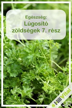 Parsley, Did You Know, Vegas, Healthy, Food, Health, Meals
