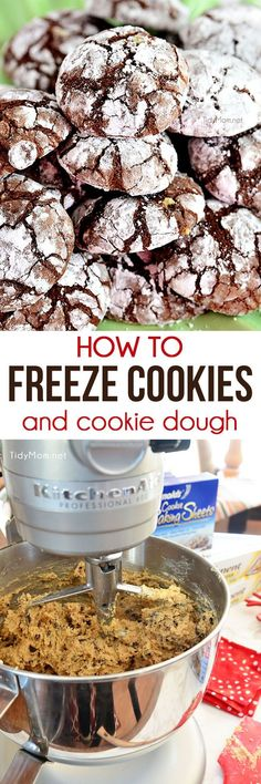 How To Freeze Cookies and Cookie Dough -- if you've ever wondered if you can freeze your favorite cookies or cookie dough, you're in luck! Frozen cookie dough also makes a fabulous and simple gift idea. Cupcakes, Freezer Cookies, Freezable Cookies, Cookie Recipes, Dessert Recipes, Cookie Ideas, Frozen Cookie Dough, Freezing Cookie Dough, Cookie Brownie Bars