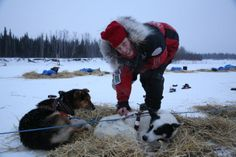 Aliy Zirkle in Nikolai Iditarod 2014 4V1A1172.jpg (640×427)
