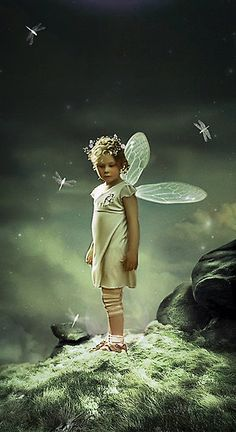 Fractured Fairy