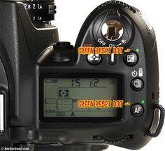nikon d90 magic lantern dvd guide i am a camera i came i saw rh pinterest com Nikon D90 Buttons Blue Crane DVD Nikon D90 Digital