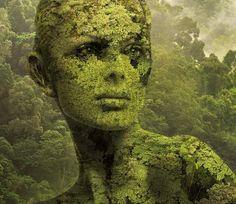 nature by Igor Morski, via Behance
