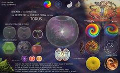 Nassim Haramein - From Quarks to Quasars, the most foundational energy flow structure in the universe: Torus.