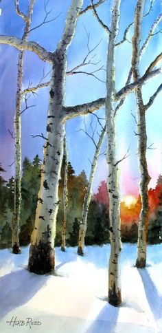 """""""Aspen Sunset"""", Watercolor,by Herb Reed Watercolor Pictures, Watercolor Trees, Watercolor Landscape, Landscape Paintings, Watercolor Paintings, Watercolours, Art And Illustration, Art Pictures, Photos"""