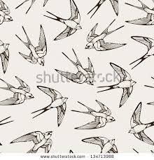 swallows - Google Search