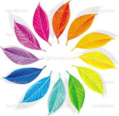 Color wheel. Would make a great tattoo.