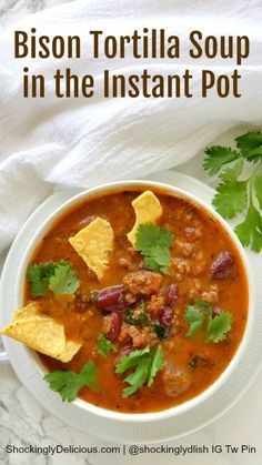 Bison Tortilla Soup