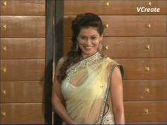 Payal Rohatgi in GOLDEN TRANSPARENT SAREE   Filmfare awards 2013.