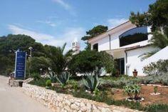 Domki letniskowe Wyspa Lastovo - tanio na CASAMUNDO Pine Forest, Be Perfect, Diving, Island, Mansions, House Styles, Beaches, Nature, Plants